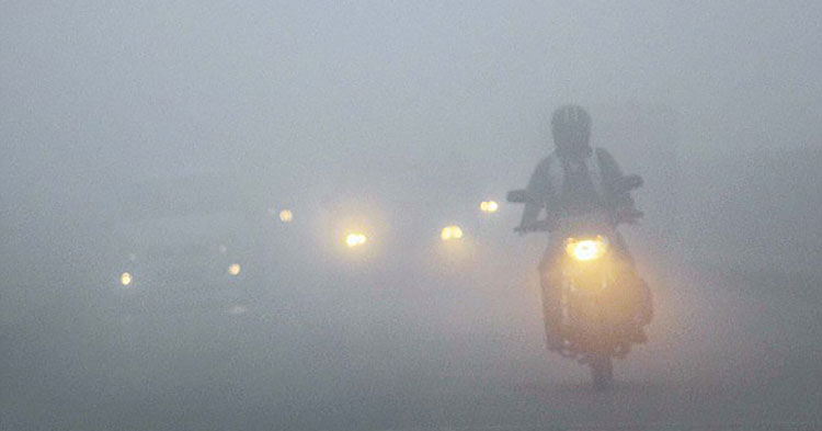 Foggy Roads Ahead: 8 Tips To Stay Safe This Winter - Article